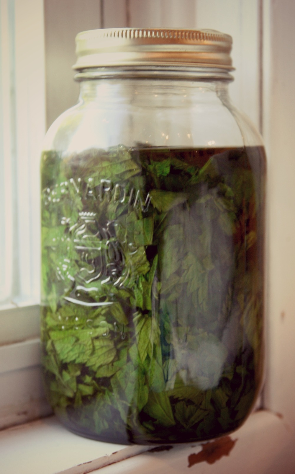 Strong Nettle Tincture