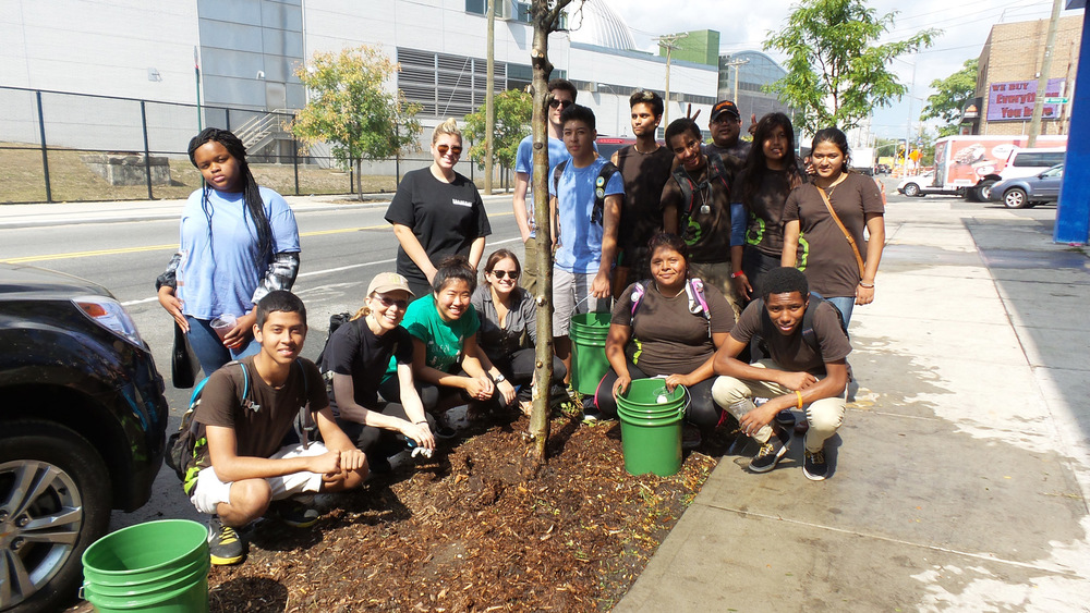 Director of Youth Programs Cheryl Blaylock and her amazing group of kids teamed up with Broadway Stages to provide a two-hour tree stewardship program.