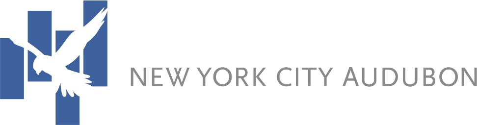 nyca-banner.jpg