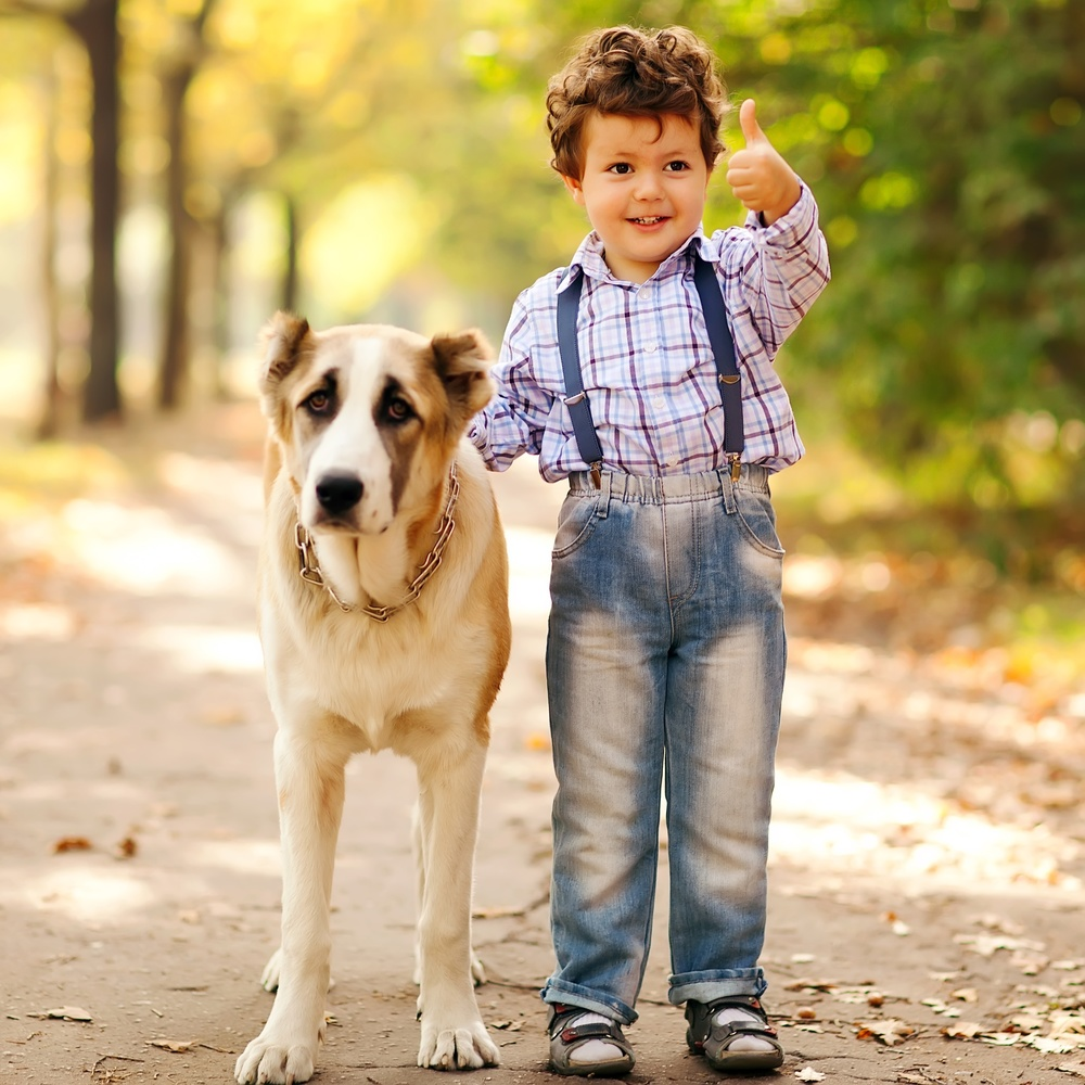 Order pet health products on www.agelesspaws.com