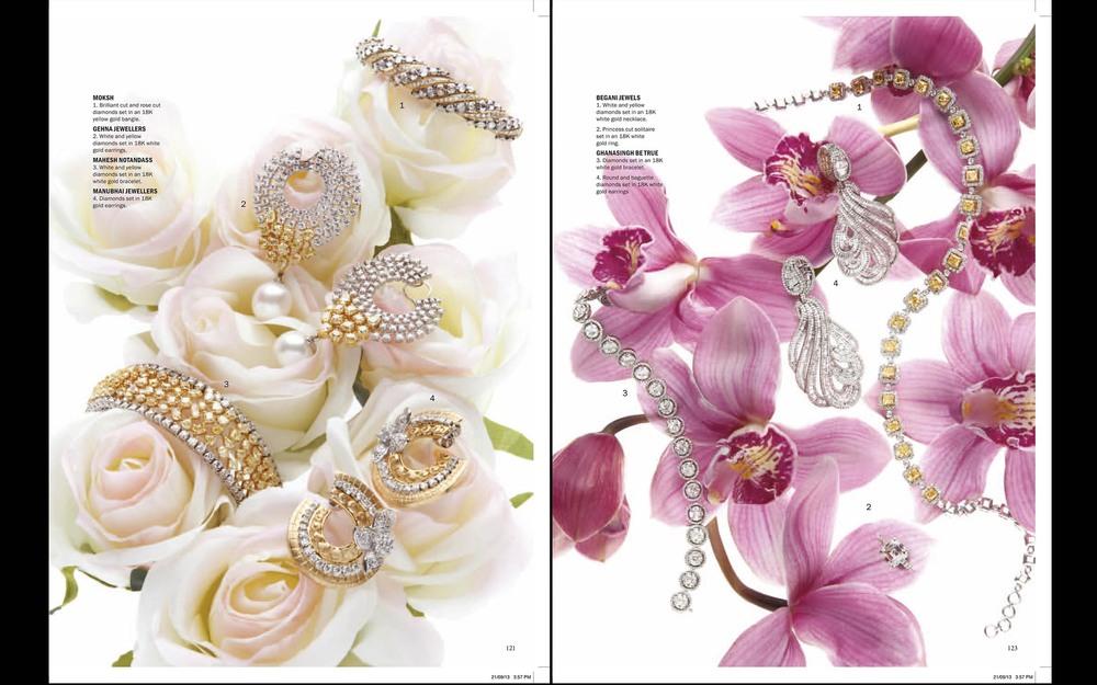 Noblesse magazine ,India