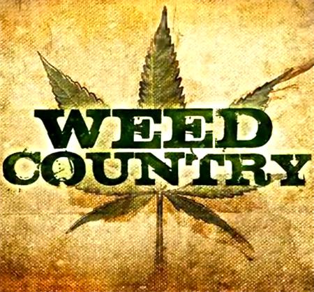weed.jpeg