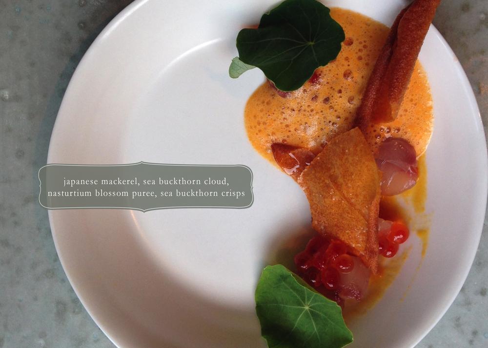 mackerel sea buckthorn.jpg