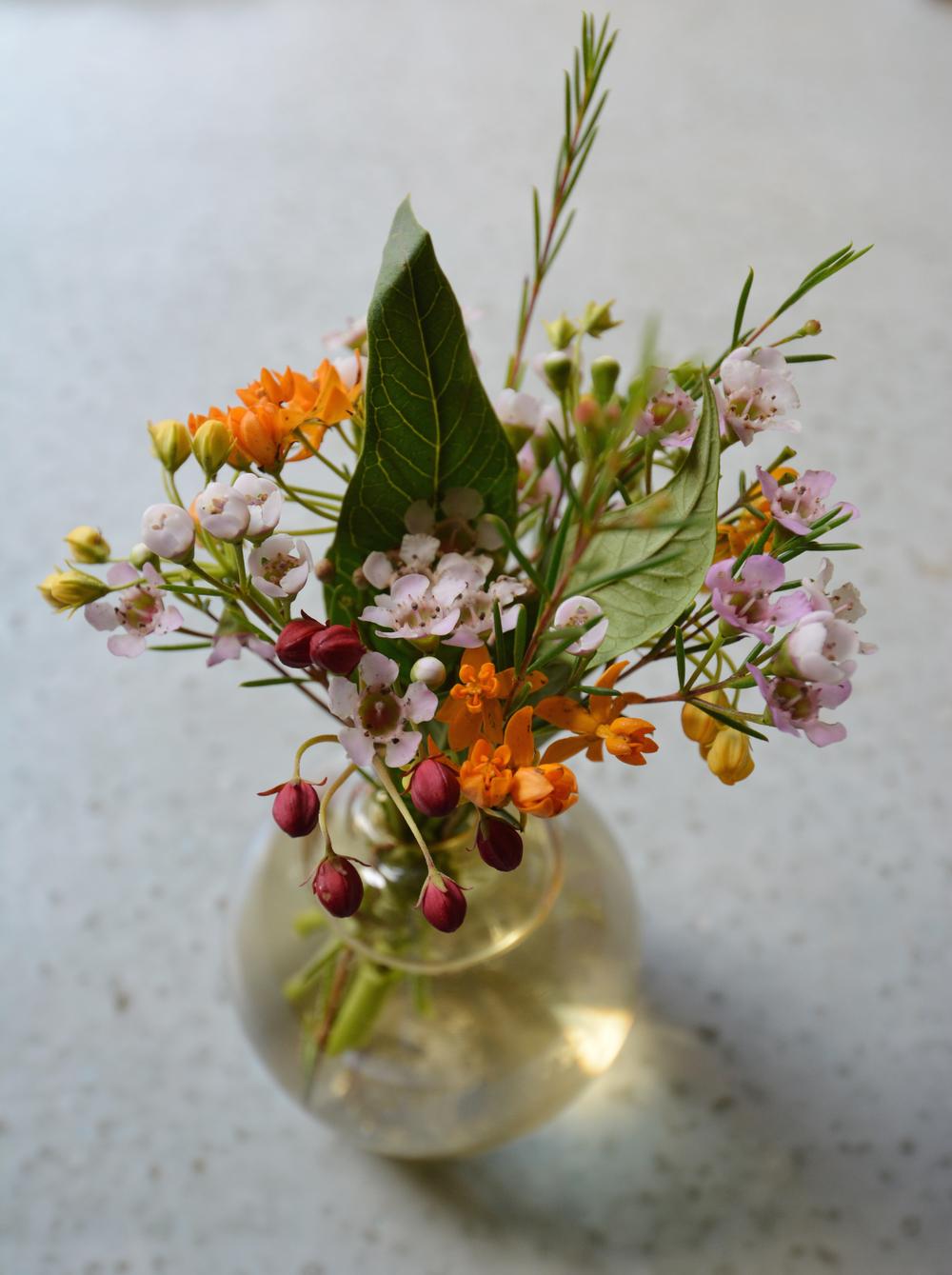 flowerMorten1edit.jpg