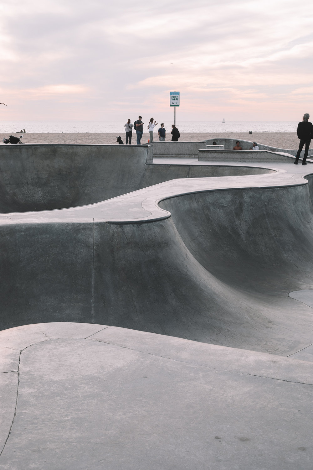 Skate Park Sunset Palm Leaves Venice Beach Photography  / Canon 5D Mark IV / kelly creative