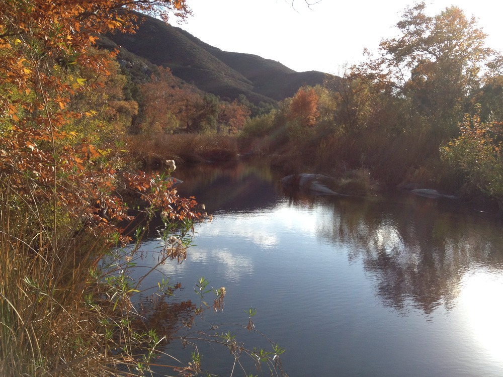 The Santa Margarita River.  The last undammed river in Southern California.