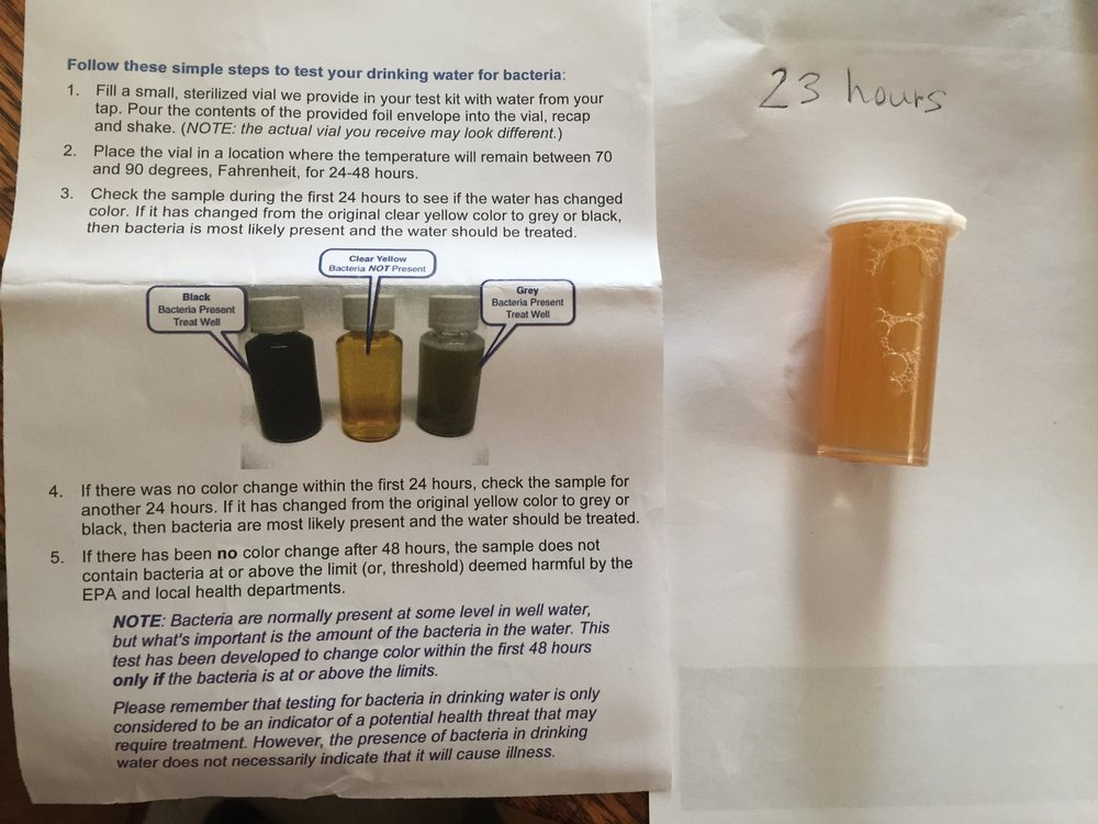 Our test is looking good!  If bacteria levels would high, the color of the water would start changing to grey or black.
