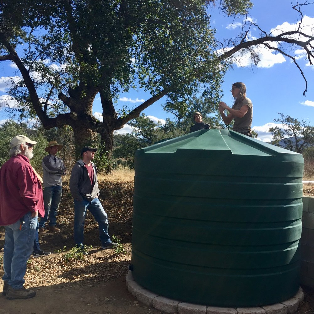 There's plenty of room for this 1320 gallon rainwater tank