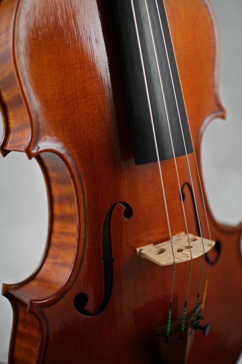 Cello 4.jpg