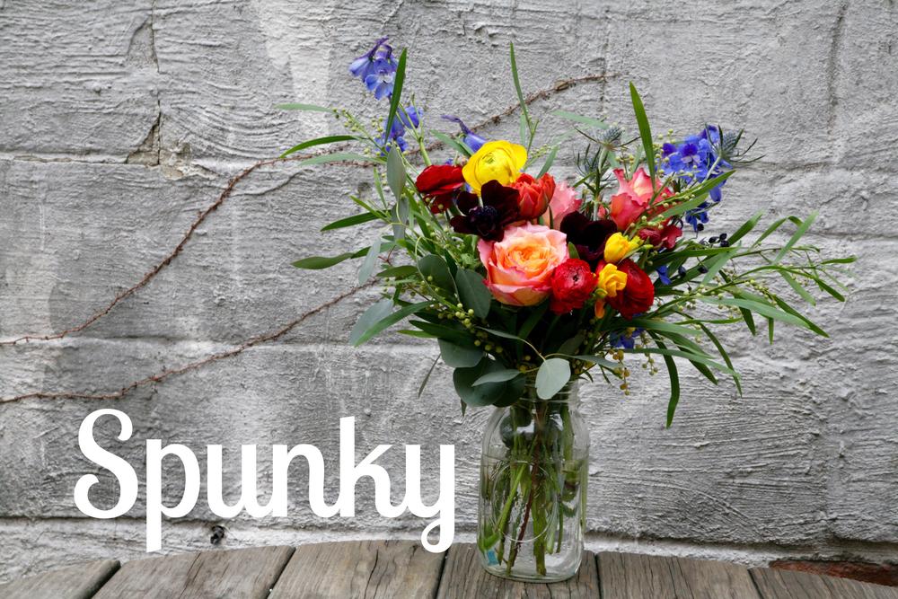 SPUNKY.jpg