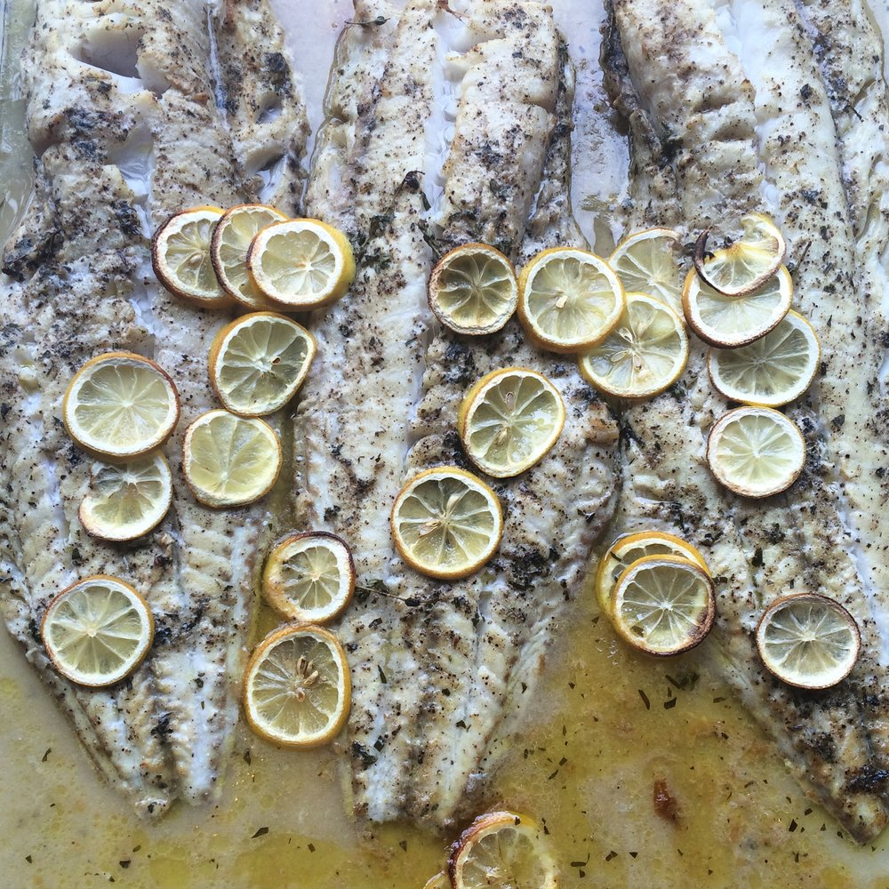 Lemon Hake.JPG
