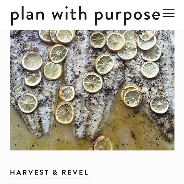 So excited to be featured on @planwpurpose as a sustainable caterer focused on reducing food waste. Check us out on their website! As always, we love working with clients (and other vendors) who are passionate about giving back while planning their celebratory events. Thanks for the feature! #HarvestandRevel