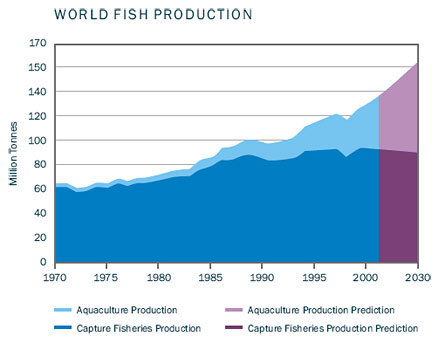 aquaculture production.jpg