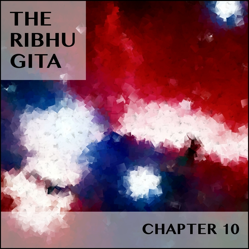 RIBHU_CHAPTER_10