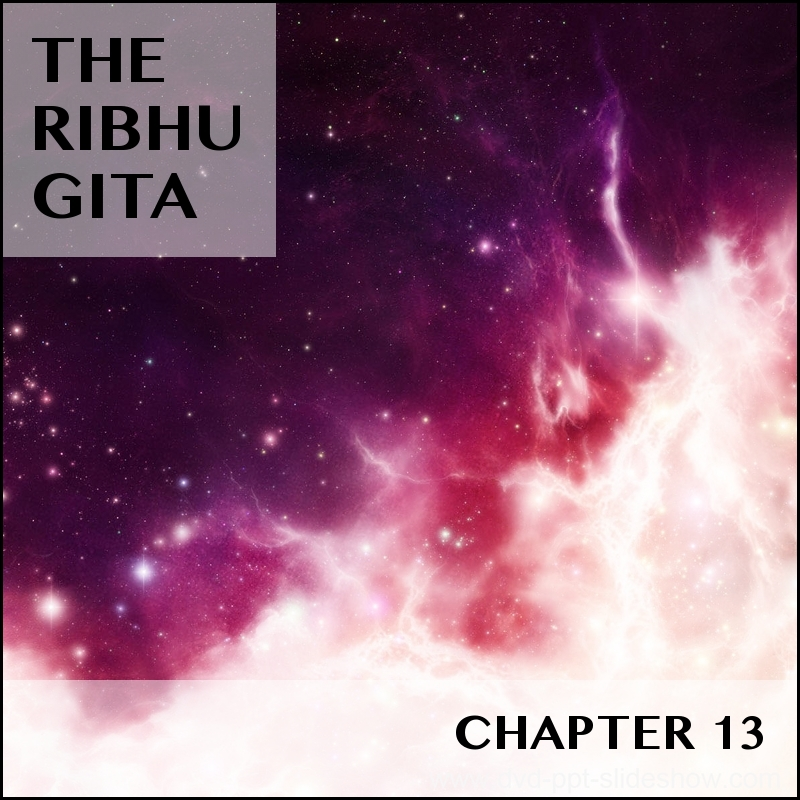 RIBHU_CHAPTER_13