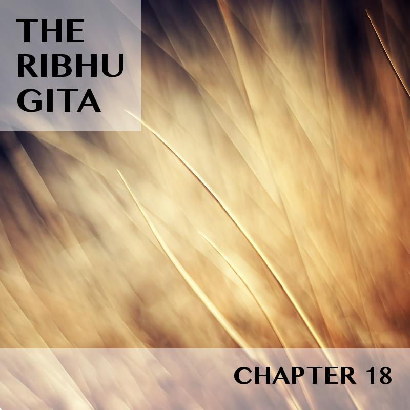 RIBHU_CHAPTER_18