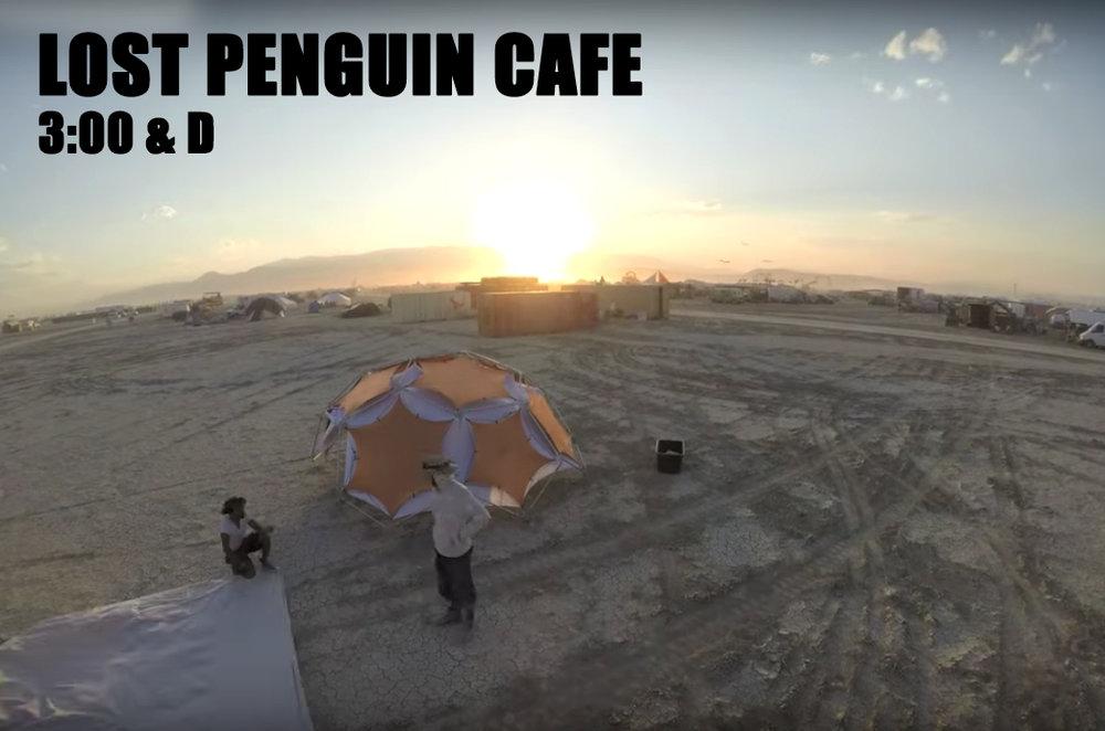 Lost Penguins.jpg
