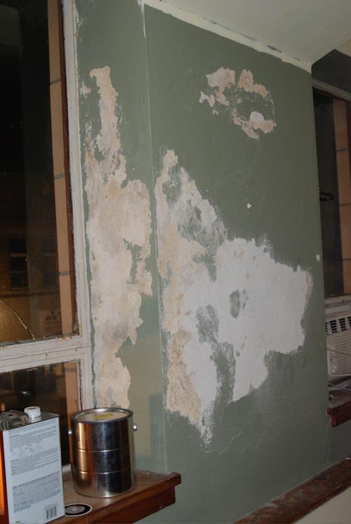 icky-wall.jpg