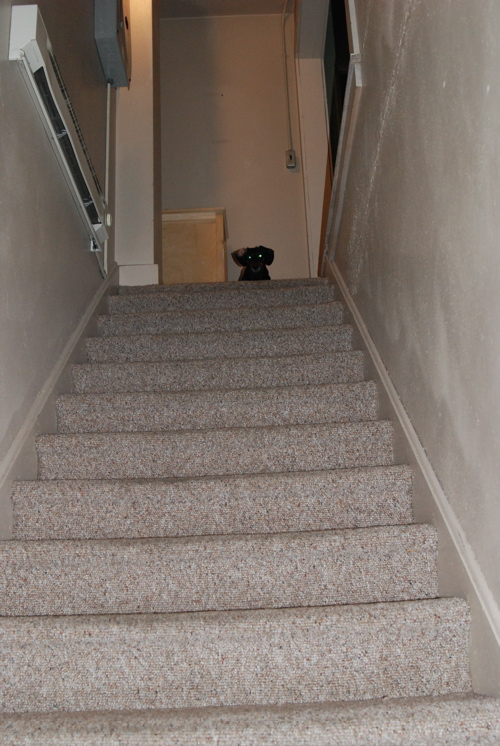 po-stairs.jpg