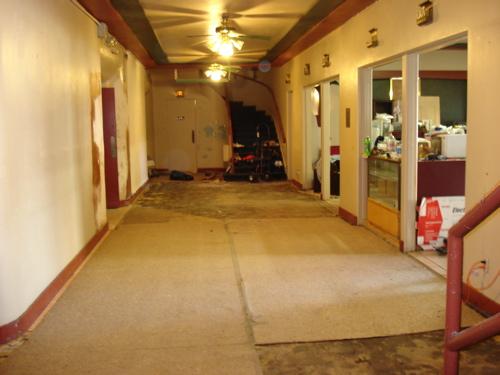 carpet-gone3.JPG