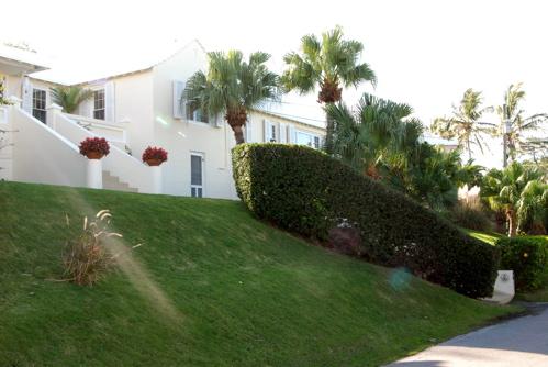 house-with-palms.JPG
