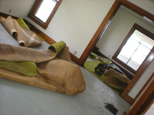 new-house-carpet.jpg