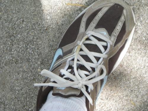 shoe-eaten.jpg