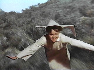 flying-nun.jpg