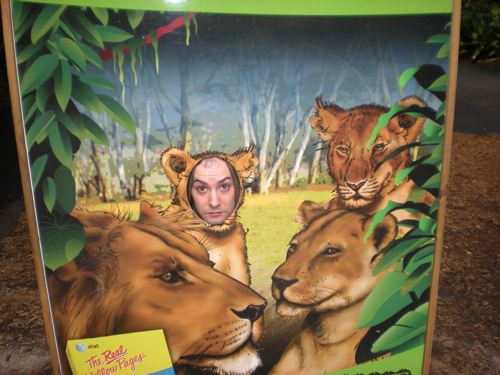 joel-lions.jpg