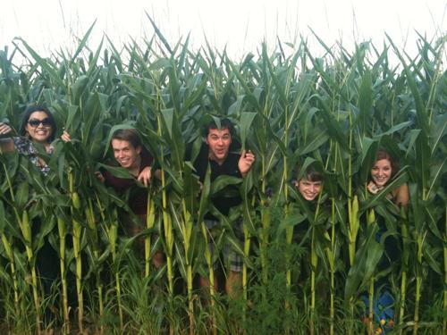 corn-pic.jpg