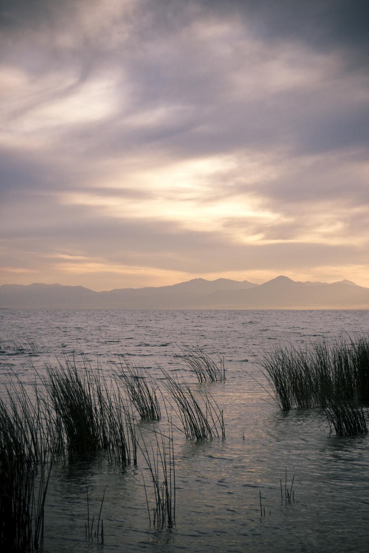Utah Lake-1006-014.jpg