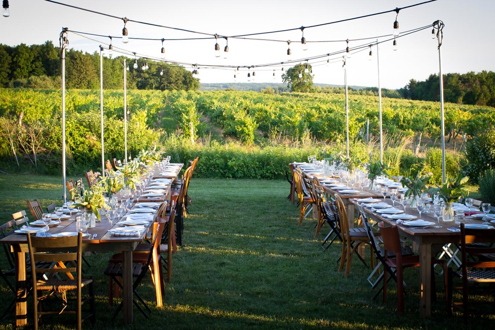FINGERLAKES VINEYARD DINNER