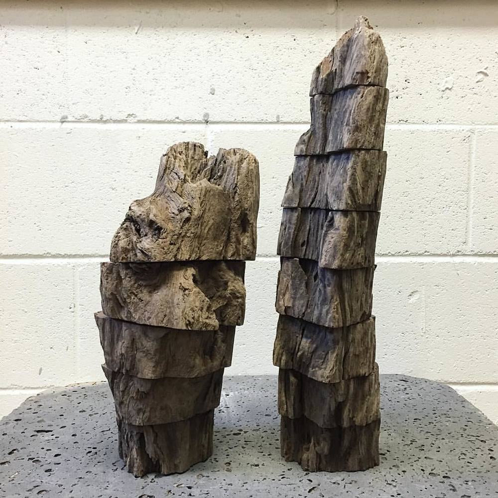 Driftwood Duo (at University of Hawaii School of Architecture Alumni Association (UHSAAA))