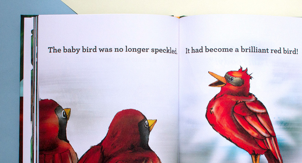 The baby bird transforms into a brilliant red bird in the Brilliant! children's book about adoption.
