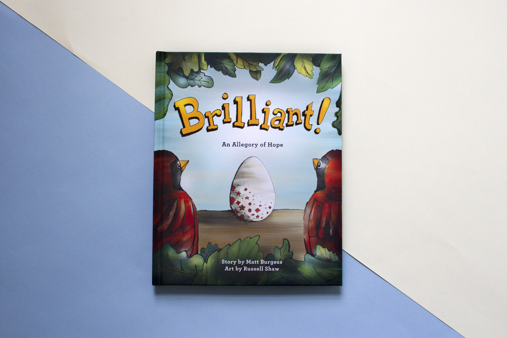 Hand illustrated children's book cover for Brilliant! an allegory of hope, a book about two parent birds and their adopted egg.