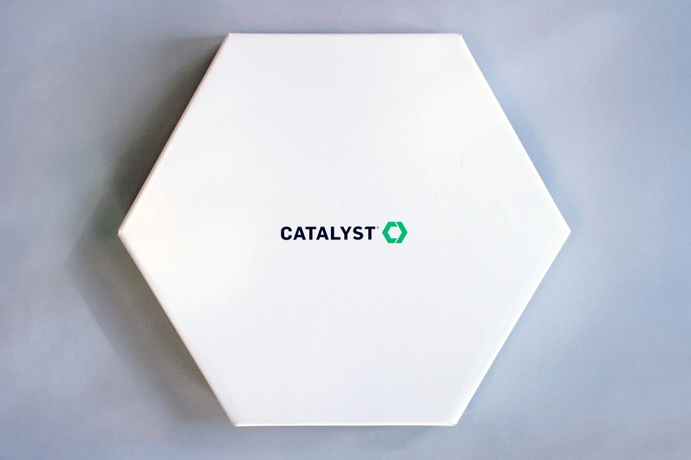 Catalyst Conference  2014 Changemakers group leader box with white hexagon packaging design.