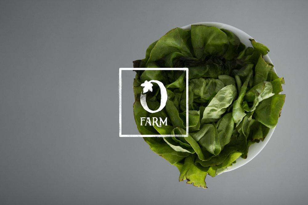 Olivette Farm Branding