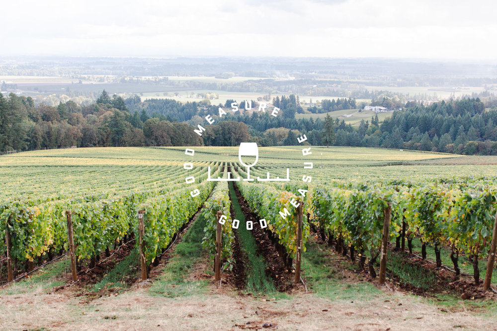 The Good Measure wine glass and ruler icon and logo design with the circular typography is stamped in white over a photo of a vineyard.