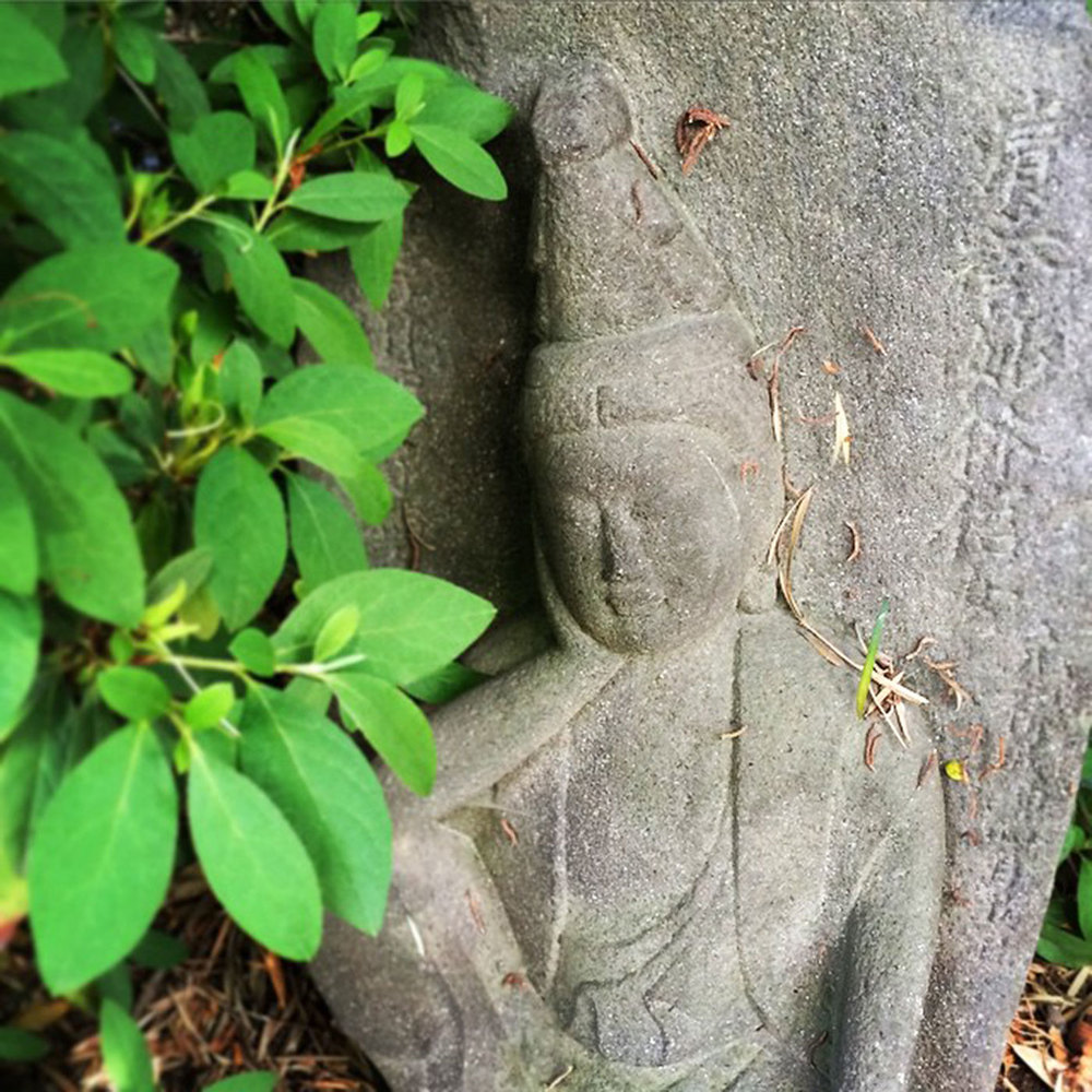 its-a-peaceful-contemplation-party-partyhat-135365-meaganchelsea33-what-does-the-stone-say-haha_17331570393_o.jpg