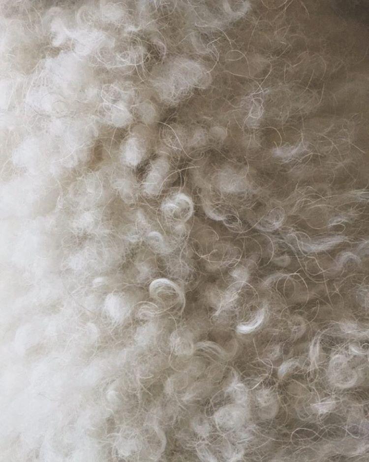 clouds-or-poodle-fluff-n-stuff-289366_22718007742_o.jpg