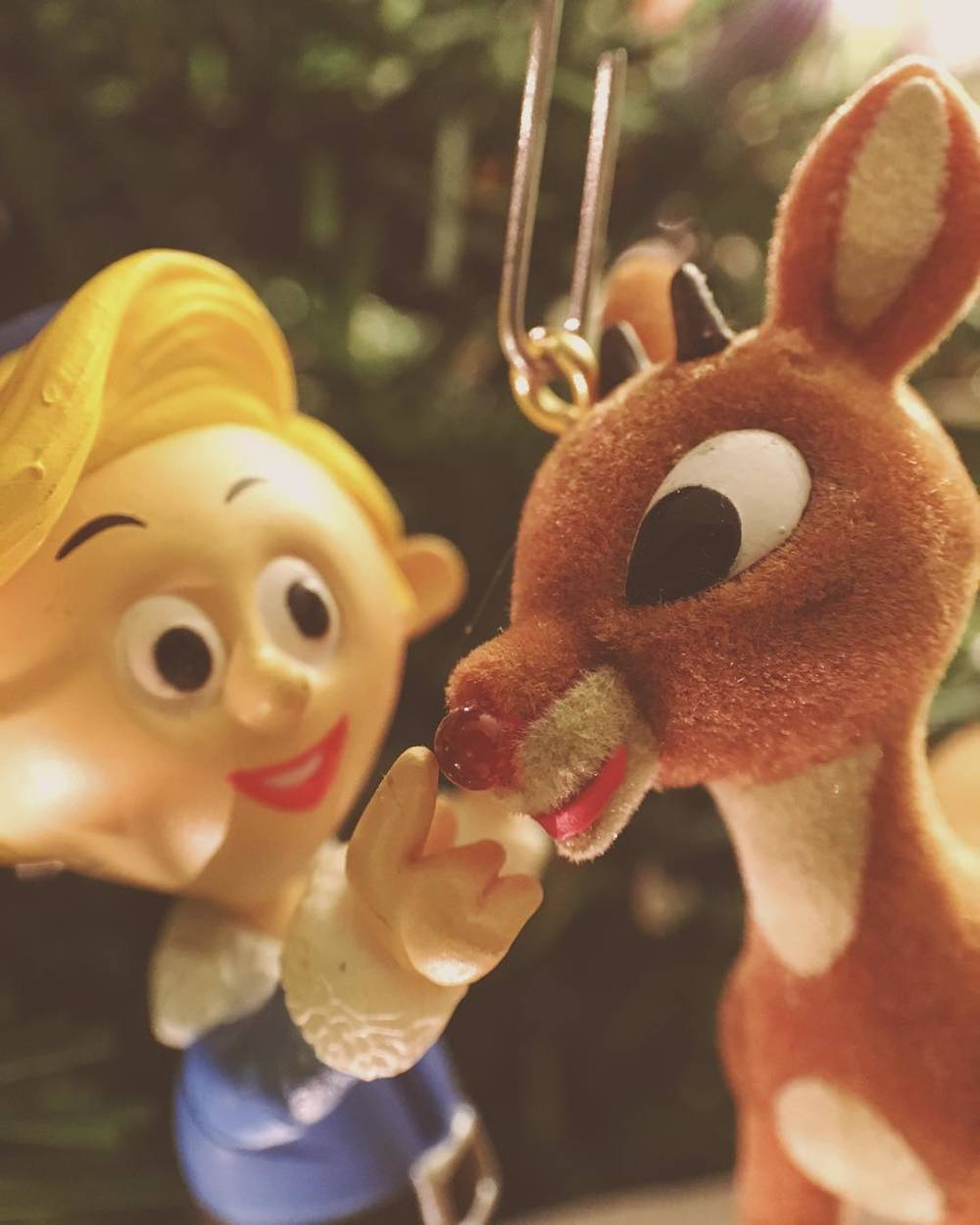 -boop-merry-christmas-everyone-it-still-counts-as-slrwednesdays-week-50-if-i-use-a-nice-macro-lens-on-my-iphone-ya-haha-xmas2015-rudolph-350365_23339249934_o.jpg