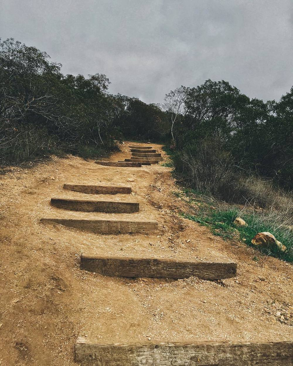 maybe-ill-conquer-this-little-gem-today-sycamorecanyon-stairs-and-semi--wilderness-moody-cloudy-day-last-time-gooutside-hiking-trailrunning-more-like-trail-huffingandpuffing-23366_23959044673_o.jpg