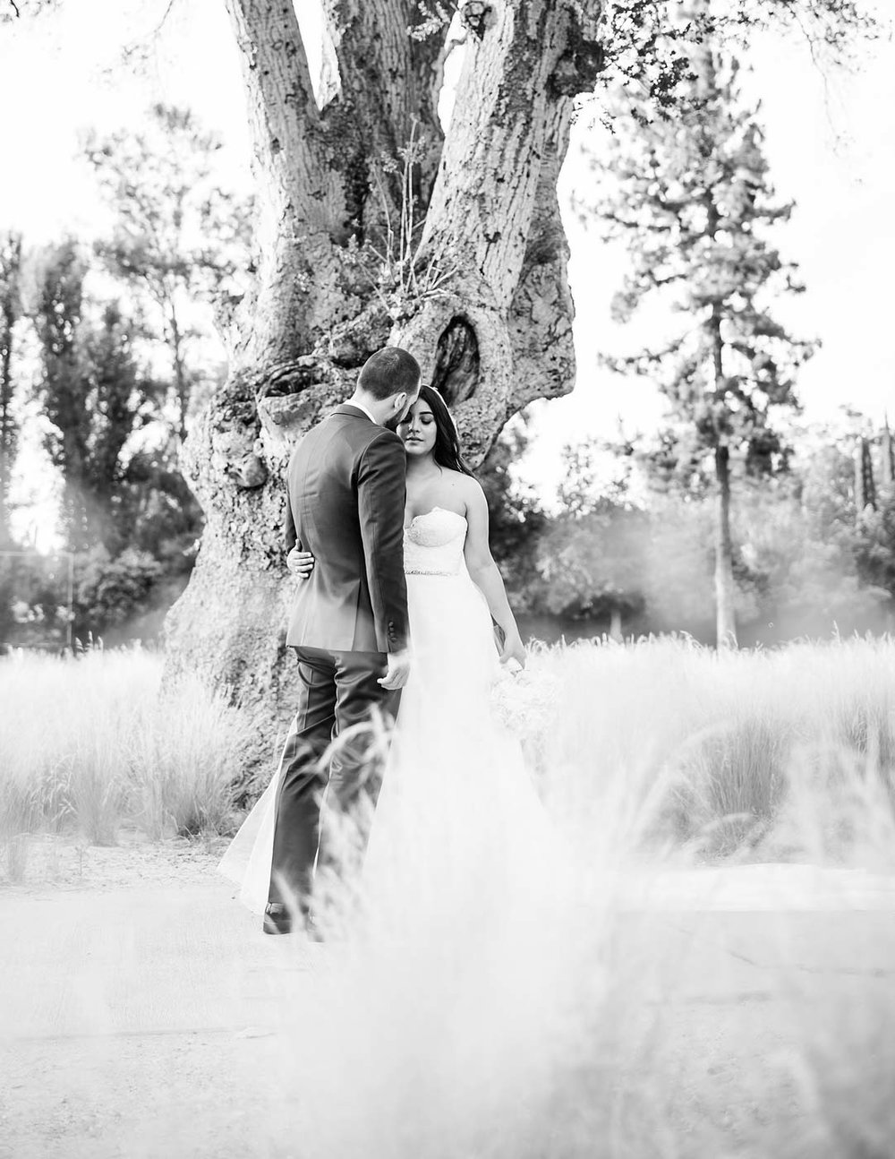 sTehra+James---Woodland-Hills-CC-410.jpg