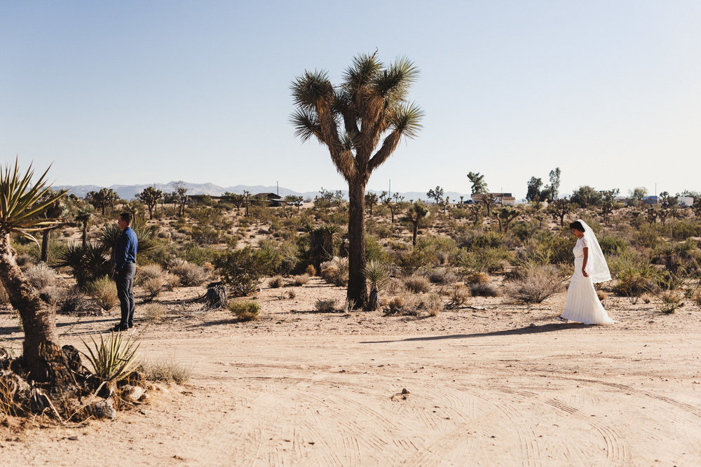 sJ + N - Joshua Tree, CA - 04 First Look-2.jpg