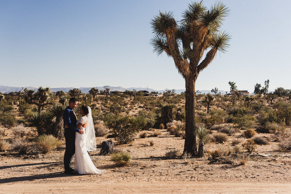 sJ + N - Joshua Tree, CA - 04 First Look-6.jpg