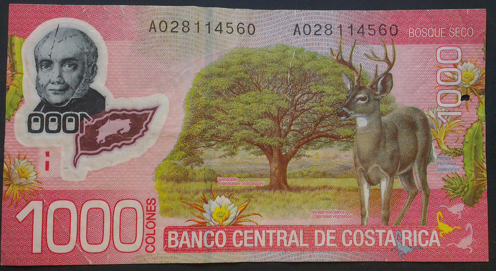 1000-colones-costa-rican-bill.jpg