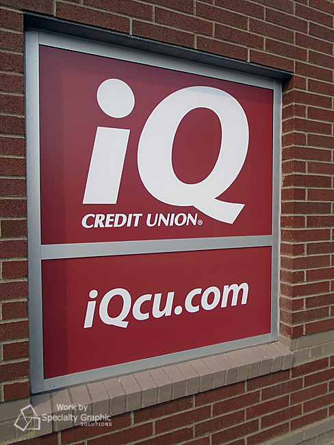 window graphics credit union iq andresen.jpg
