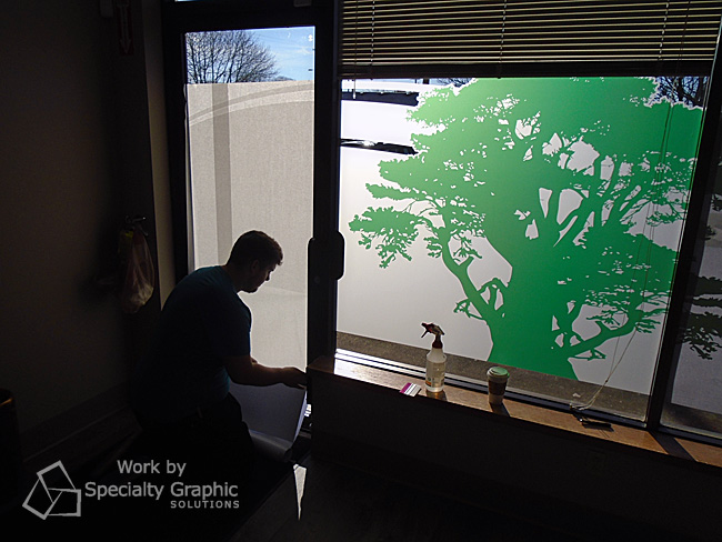 Window Graphics for Doctor's Offices in Vancouver WA