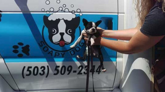 Vehicle graphics for mobile groomers in Oregon