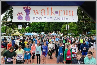 Walk+Run+for+Animals+banner.jpg